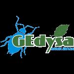 Gedysa